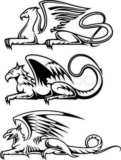 Illustration of Medieval gryphons set for tattoo, mascot or heraldry design vector art, clipart and stock vectors. Griffin Tattoo, Griffin Logo, Greif Tattoo, Dragon Tatoo, Wood Burning Art, Tattoo Stencils, Pyrography, Antique Art, Mythical Creatures