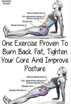 One Exercise Proven To Burn Back Fat, Tighten Your Core And Improve Posture(Vide. One Exercise Proven To Burn Back Fat, Tighten Your Core And Improve Posture(Video Tutorial) – Toned Chick Für Gesundheitstipps unter Interessante-ding. Fitness Workouts, Fitness Diet, Yoga Fitness, At Home Workouts, Health Fitness, Muscle Fitness, At Home Back Exercises, Gym Workouts To Lose Weight, Back Workout At Home