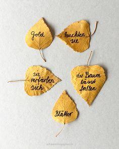 Ein Elfchen (11 Worte) aufs Herbstballt geschreiben; words on autumn leaves, schaeresteipapier