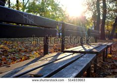Find Autumn Park stock images in HD and millions of other royalty-free stock photos, illustrations and vectors in the Shutterstock collection. Thousands of new, high-quality pictures added every day. Autumn Park, Outdoor Furniture, Outdoor Decor, My Photos, Photo Editing, Royalty Free Stock Photos, Pictures, Image, Editing Photos