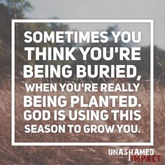 Sometimes you think you're being buried when you're really being planted. God is using this season to grow you. Keywords: struggles, discouragement, faith, trials