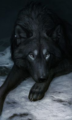 Wolf by Atenebris #wildlife art