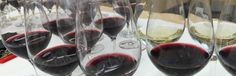 10 vins à moins de 10$ Red Wine, Portugal, Alcoholic Drinks, Glass, Drinkware, Alcoholic Beverages, Corning Glass, Alcohol