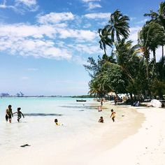 Boca Chica | HonestlyYUM