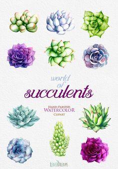https://www.etsy.com/listing/246268478/watercolor-succulents-clipart-hand?ga_order=most_relevant