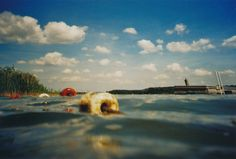 Krab (Unterwasserkameragehäuse) (c) Lomoherz.de, lomo