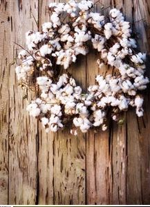 Cotton Wreath, this would be neat to put up after Christmas for the rest of the Winter.  I love it!