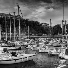 Saundersfoot Harbour, Pembrokeshire by Oana Display Advertising, Print Advertising, Marketing And Advertising, Retail Merchandising, Day Hike, Us Images, Walking, Boat