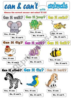 can-can´t, animals, some simple verbs Very colourful and enjoyable for kids. Learn English For Free, Learning English For Kids, English Worksheets For Kids, English Lessons For Kids, Kids English, English Activities, Grammar For Kids, Teaching English Grammar, English Writing