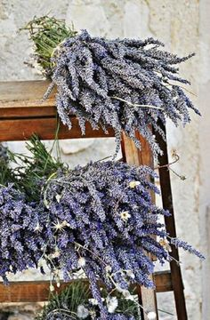 Lavender- helps promote restful sleep and aids in keeping the bugs away