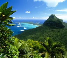Luxury Lord Howe Accommodation - Capella Lodge - Island