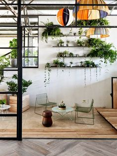Kiss Your Plants! Excellent touch to my retreat!