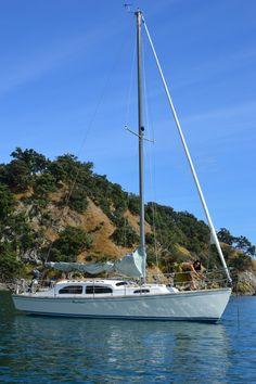 Townson 28 - 40 yr old nz plywood yacht