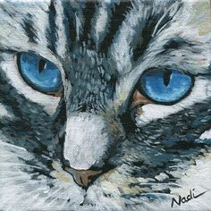 "Daily Paintworks - ""Cat Eyes"" - Original Fine Art for Sale - © Nadi Spencer"