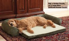Dog Beds: Sofas: SofSuede Bolster Couch at Drs. Foster and Smith