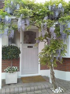 Front Door In Farrow and Balls Pavilion Grey Farrow and Ball have released images of fifteen of their favourite front doors. Exterior Paint, Exterior Design, Gray Exterior, Modern Exterior, Door Design, Pavilion Grey, Front Door Steps, Front Entry, Front Porch