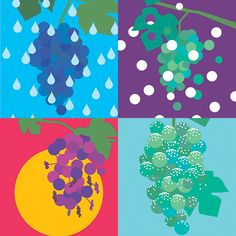 How Weather Can Make or Break a Wine Vintage | Food & Wine