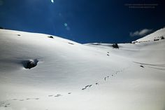 Blue & white - A white landscape on Tzoumerka mts in central Greece. The absolute traquility and the ultimate combination of blue and white...