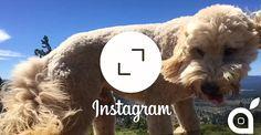 Ecco come pubblicare foto e video su Instagram in Portrait e Landscape anzichè nel formato quadrato