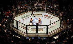 Os 'lutadores vendidos' do UFC