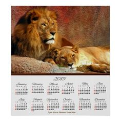 #2015 #Lion and Lioness Laying #Poster #Calendar