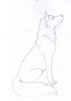 Simple wolf sketch