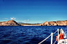 Top things to do in Los Cabos. Must do activities in San Jose del Cabo and Cabo San Lucas. Sailing, snorkeling, tacos and more.