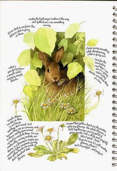 Marjolein Bastin 2007 Weekly Planner art: bunny | Flickr - Photo Sharing!