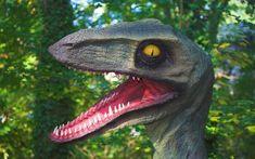 Existen los dinosaurios yahoo dating