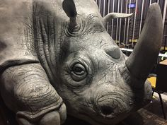 Up close and personal with the rhinoceros at the Asolo Repertory Theatre in Sarasota, Florida. Theatre of the Absurd, indeed.