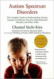 the guide to understanding autism