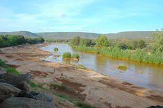 THE AMARA ELEPHANT BLOG! Kenya, Conservation, Golf Courses, River, Explore, Mountains, Elephants, Outdoor, Blog