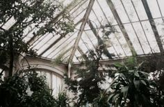 The glass gardens on the Palamine Estate