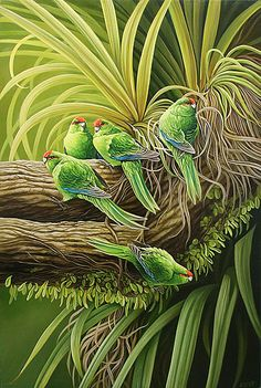 Five Kakariki by Craig Platt Nz Art, Art For Art Sake, Audubon Prints, Bird Artists, New Zealand Art, Maori Art, Bird Artwork, Tropical Art, Wildlife Art