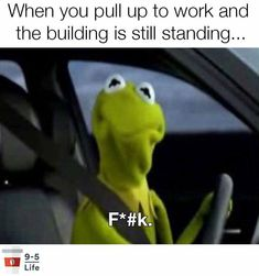 Kermit the Frog shows my road rage Memes Da Internet, Mexican Problems, Funny Quotes, Funny Memes, Car Memes, That's Hilarious, Funny Shit, Car Quotes, Funny Posts