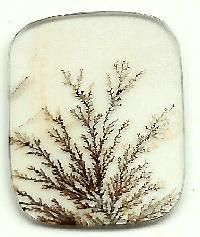 Dendritic Agate Stones Manufacturer Supplier in Banda India Crystals Minerals, Rocks And Minerals, Crystals And Gemstones, Stones And Crystals, Moss Agate, Agate Stone, Dendritic Agate, Rocks And Gems, Stoner