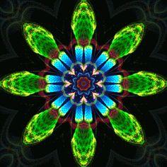Eight petals by luisbc
