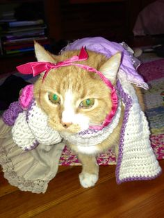 Cats can dress up too! #HelloKitty