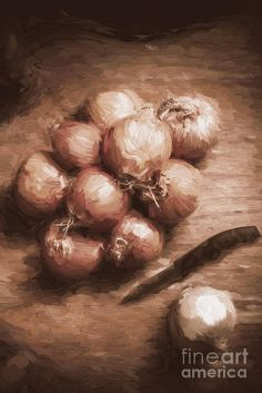 Rustic cooking still life digital painting of brown onions on a wooden kitchen table with knife. Dining home decor by Ryan Jorgensen