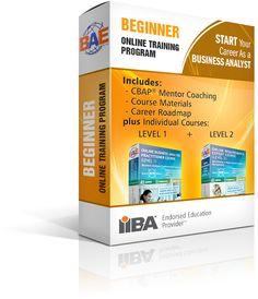 Business Process Management Certification Training   BPM Training