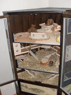 Hamster cage idea.