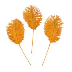 Orange Ostrich Feathers - OrientalTrading.com