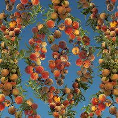 Fallen Fruit, Georgia Peach wallpaper.  See this and more from Fallen Fruit at Arts ReSTORE LA: Westwood from November 1-24. More information: http://artsrestore.la/