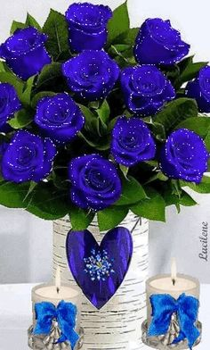 1 million+ Stunning Free Images to Use Anywhere Blue Roses Wallpaper, Wallpaper Nature Flowers, Flowers Gif, Beautiful Flowers Wallpapers, Flower Phone Wallpaper, Beautiful Rose Flowers, Beautiful Flower Arrangements, Beautiful Gif, Amazing Flowers
