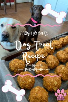 This simple no-bake dog treat recipe took me 15 minutes and my dogs love them. Ingredients 1 c Peanut Butter 1 c Pumpkin Puree (Not Pumpkin filling) 1 tsp Cinnamon 2 1/2 c Oats 1 spoon Apple sauce Step 1 Add the peanut butter, pumpkin, cinnamon and the apple sauce together into a bowl and […]