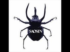 You're Not Alone  ~Saosin