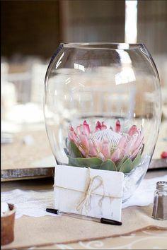 Weddings Flower Arrangements : protea flower centerpiece www. Flor Protea, Protea Bouquet, Protea Flower, Protea Centerpiece, Flower Centerpieces, Wedding Centerpieces, Wedding Decorations, Table Decorations, Ideas