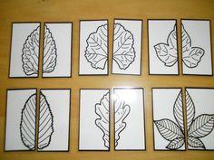 Helftenpuzzel bladeren