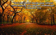 14 Best Kannada Bible Verse Images Bible Verses Scripture Verses