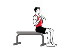Narrow LAT Pulldown Hand Position   Hands should be about shoulder width, with elbows tucked close to the rib cage. This grip engages the rhomboid muscles and biceps and is beneficial for those with shoulder impingements.